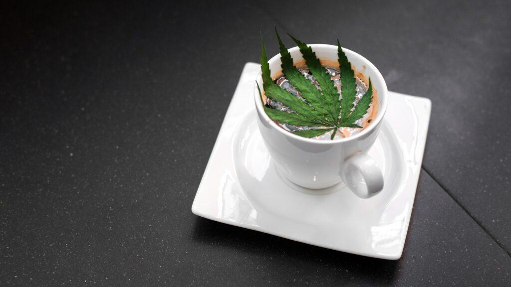 marijuana coffee edible
